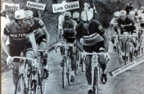 Lino Farisato. Al Tour de France