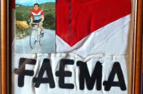 Lino Farisato| La maglia Faema