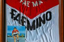 Lino Farisato|La maglia Faemino